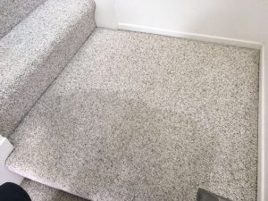trabuco canyon carpet cleaning