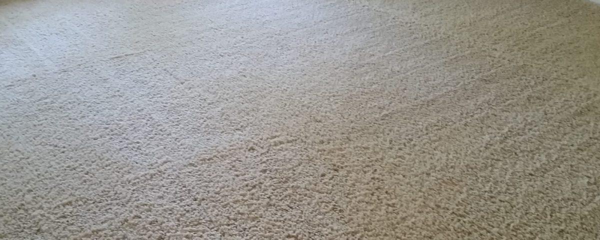 carpet cleaners tustin california